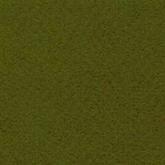 Mossgrön